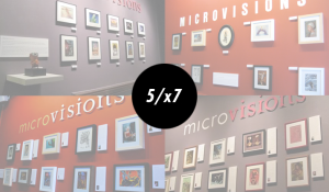 microvisions5
